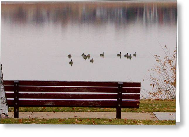 Lightning Gifts Greeting Cards - Lake Bench Greeting Card by James BO  Insogna