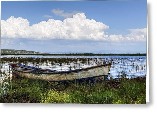 Marshland Greeting Cards - Lake Beysehir - Turkey Greeting Card by Joana Kruse