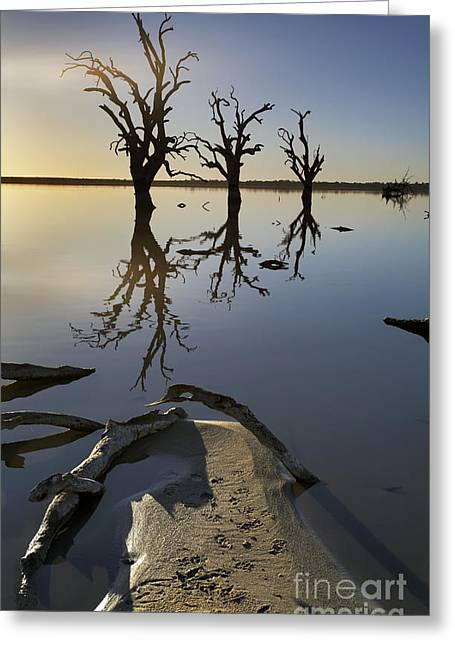 Drown Greeting Cards - Lake Bonney Barmera Riverland South Australia Greeting Card by Bill  Robinson