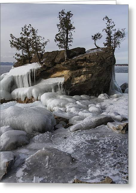 Champlain Greeting Cards - Lake Champlain-boulder-trees-ice-winter-Vermont Greeting Card by Andy Gimino