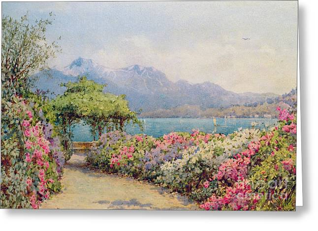Picturesque Paintings Greeting Cards - Lake Como from the Villa Carlotta Greeting Card by Ernest Arthur Rowe