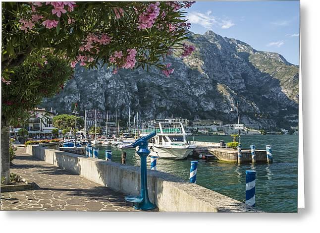 Flowering Plants Greeting Cards - LAKE GARDA Harbour of Limone sul Garda Greeting Card by Melanie Viola