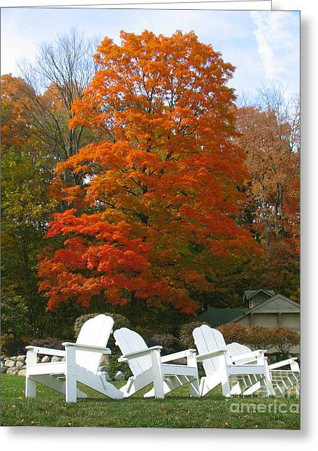 Lawn Chair Greeting Cards - Lake Geneva Chairs and autumn colors Greeting Card by Tom Tripp