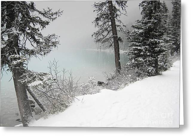 Snow Tree Prints Greeting Cards - Lake Louise Forest Trees Landscape Greeting Card by Andrea Hazel Ihlefeld