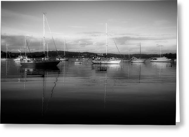 Macquarie Greeting Cards - Lake Macquarie Marina Australia B W Greeting Card by Desert Rose 7