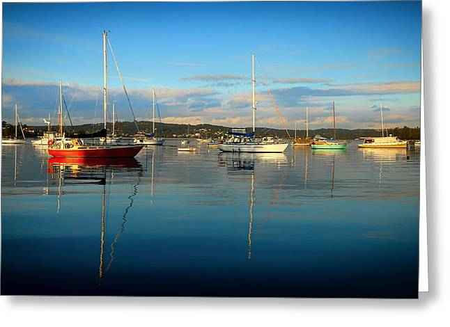 Macquarie Greeting Cards - Lake Macquarie Marina Australia Greeting Card by Desert Rose 7