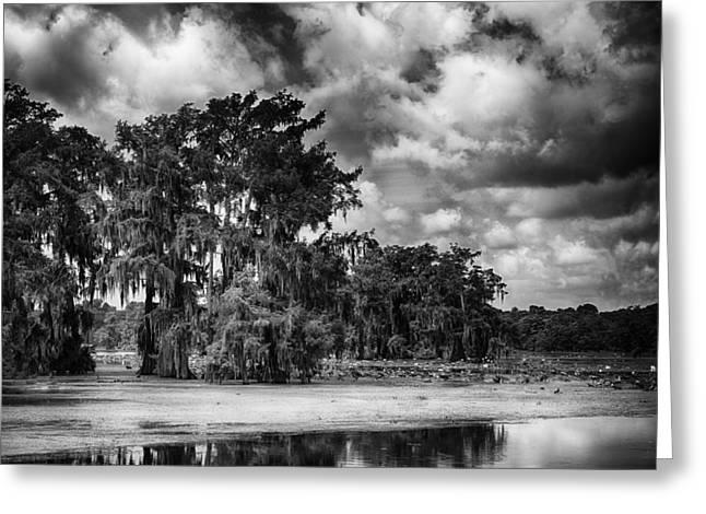Martinville Greeting Cards - Lake Martin Landscape 2 Greeting Card by Liz Keeler