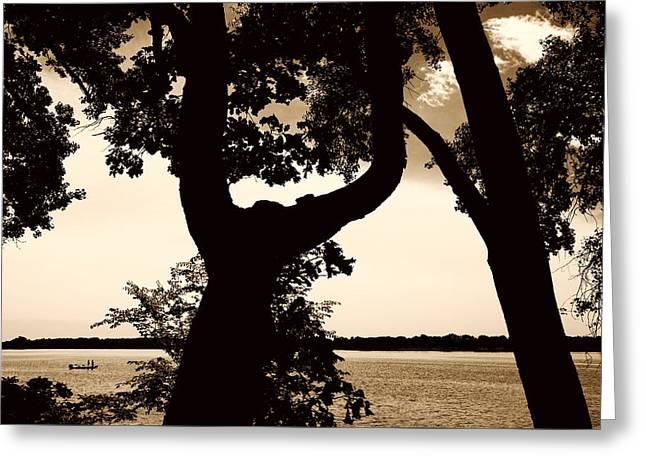 Minnesota Photo Greeting Cards - Lake Minnesota Greeting Card by Susan Stone