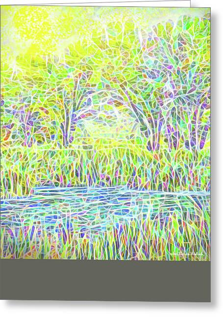 Aquatic Greeting Cards - Lake Reeds On A Sunny Day - Pond In Boulder County Colorado Greeting Card by Joel Bruce Wallach