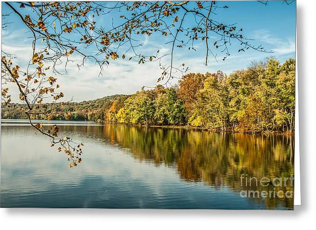 Nashville Tennessee Greeting Cards - Lake Reflections. Greeting Card by Debbie Green