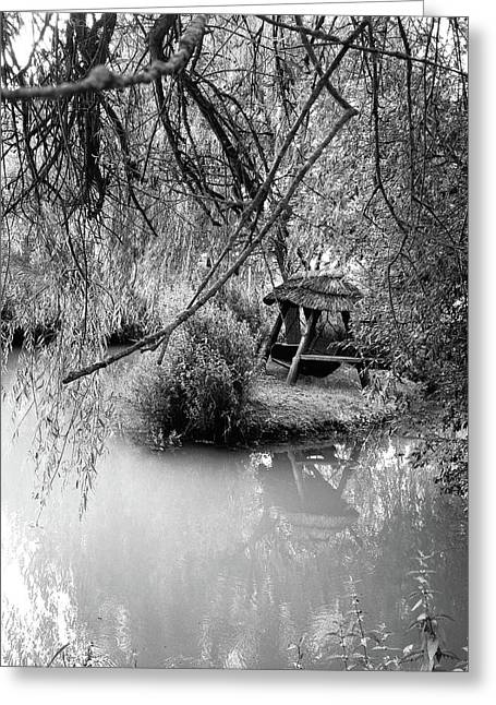 Lake Swing - Black And White Greeting Card by Nicole Parks