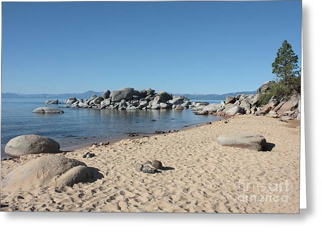 Sandy Beaches Greeting Cards - Lake Tahoe Morning Greeting Card by Carol Groenen