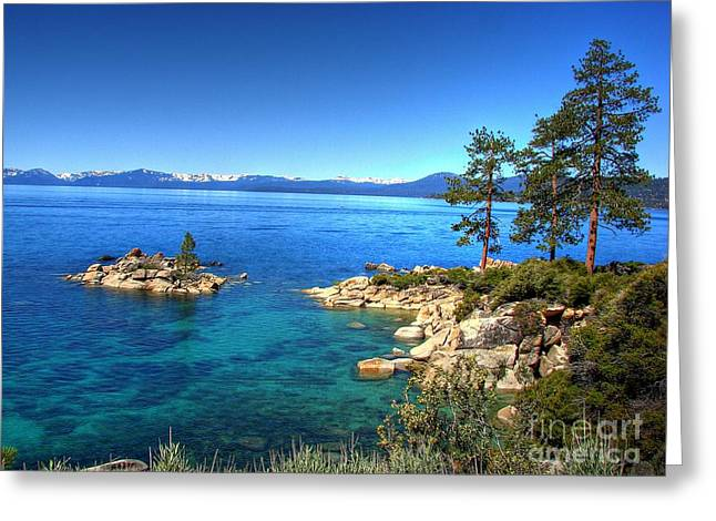 Lake Photography Greeting Cards - Lake Tahoe State Park Nevada Greeting Card by Scott McGuire