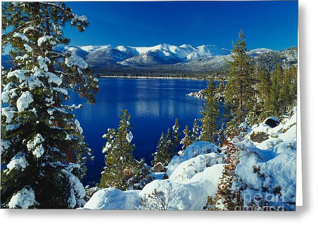 Lake Greeting Cards - Lake Tahoe Winter Greeting Card by Vance Fox