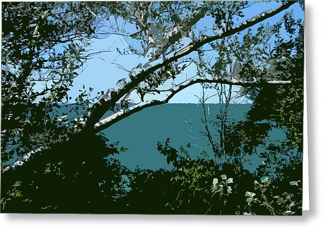 Birch Tree Digital Greeting Cards - Lake Through the Trees Greeting Card by Michelle Calkins