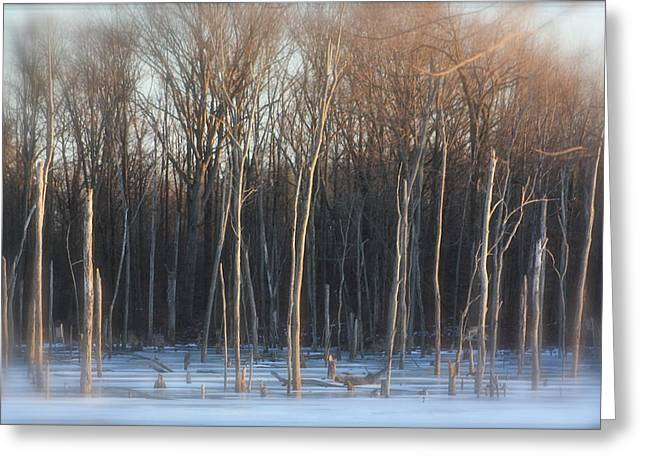 Indiana Winters Mixed Media Greeting Cards - Lake Trees of Winter Greeting Card by Bruce McEntyre