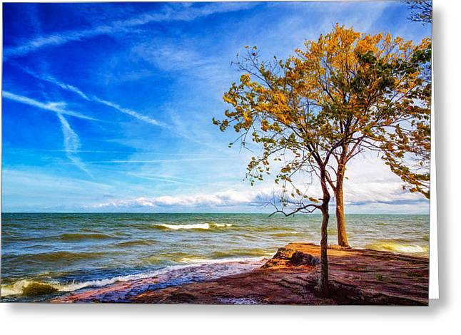 Nature Scene Greeting Cards - Lakeside Greeting Card by John Bailey
