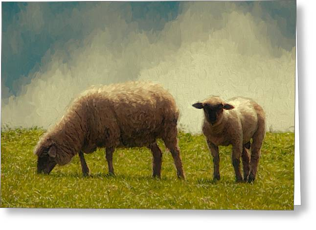 Sonoma County Digital Greeting Cards - Lamb and Mother Greeting Card by John K Woodruff