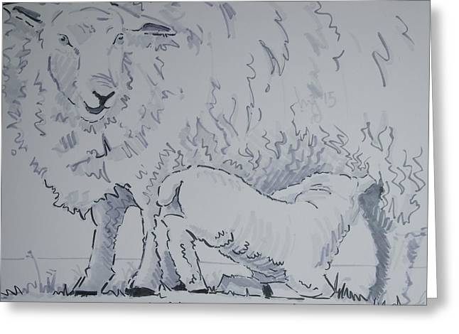 Feed Drawings Greeting Cards - Lamb Suckling Greeting Card by Mike Jory