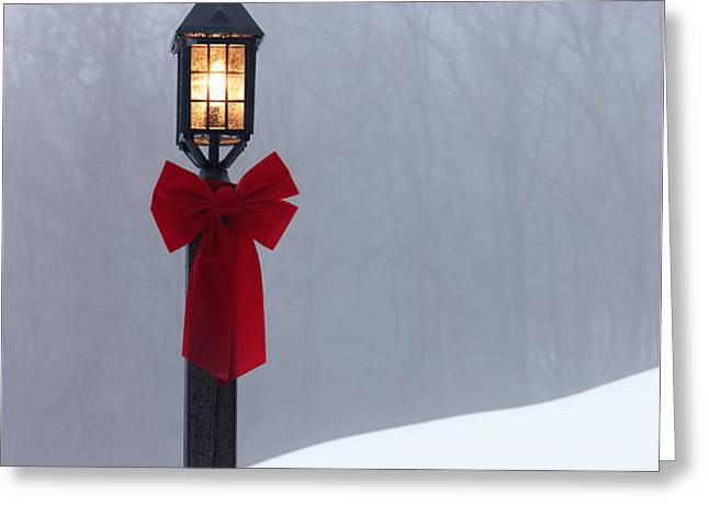 Lamppost in Snow Greeting Card by Will and Deni McIntyre