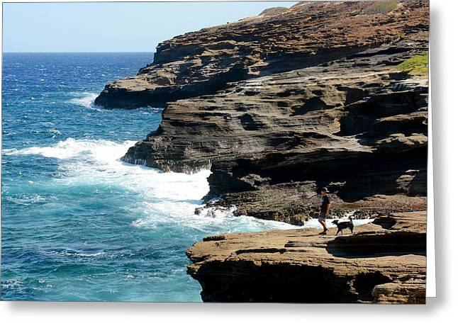 Puppies Photographs Greeting Cards - Lanai Lookout Greeting Card by Kristin Lam