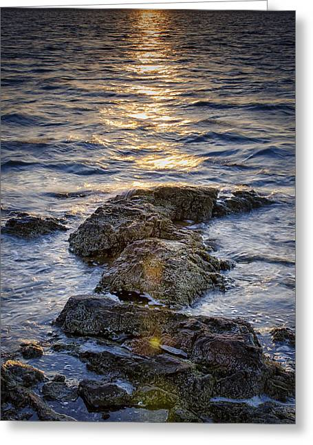 Beach Photos Greeting Cards - Land Sea and Flare Greeting Card by Simmie Reagor