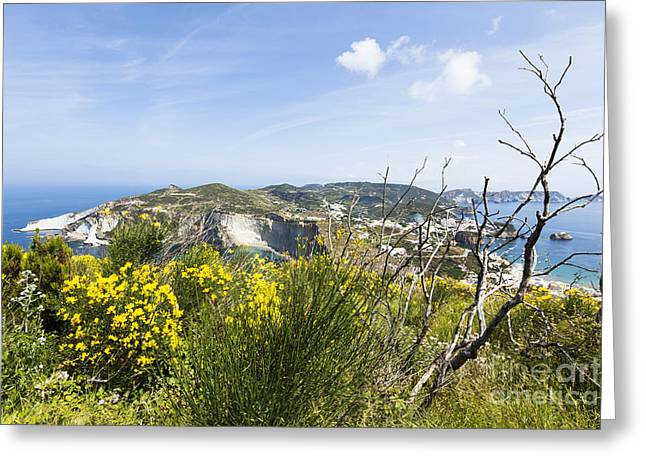 Inseln Greeting Cards - Landscape and coast of the Italian island Ponza Greeting Card by Wolfgang Steiner