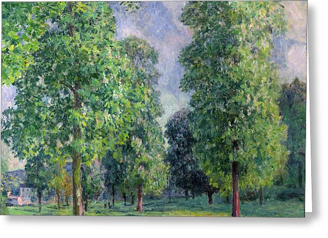 Landscape at Sevres Greeting Card by Alfred Sisley