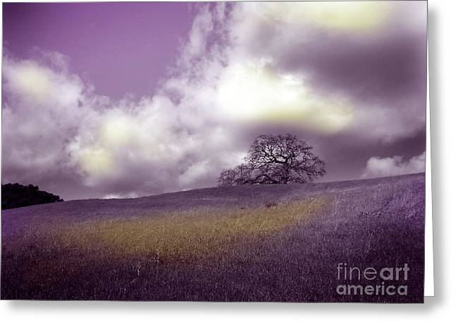 Landscape In Purple And Gold Greeting Card by Laura Iverson