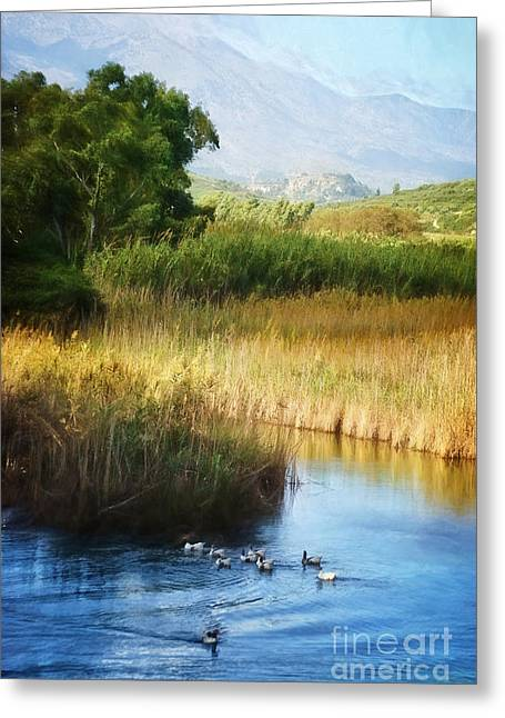 Landscape Of Crete Greeting Card by HD Connelly