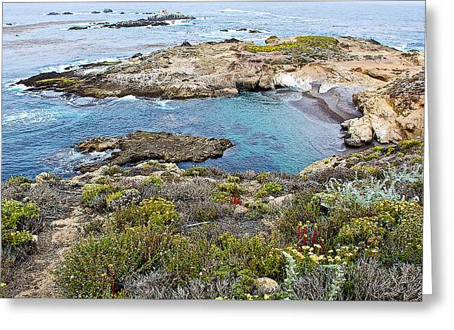 Landscape Of Point Lobos State Reserve Near Monterey-california  Greeting Card by Ruth Hager