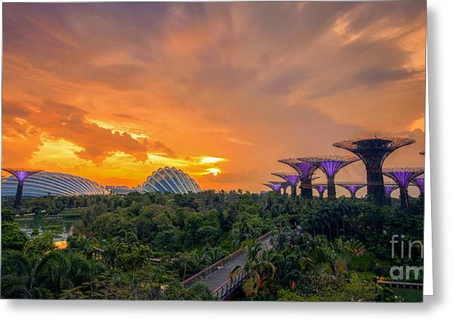 The Nature Center Greeting Cards - Landscape of the Singapore with the garden by the bay Greeting Card by Anek Suwannaphoom