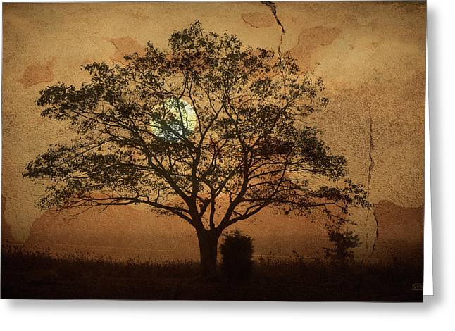 Texture Overlay Greeting Cards - Landscape On Adobe Wall Greeting Card by Dave Gordon