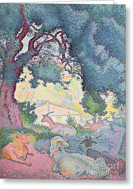Oak Tree Paintings Greeting Cards - Landscape with Goats Greeting Card by Henri-Edmond Cross
