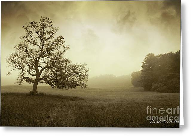 Warm Tones Greeting Cards - Landscape With Oak Tree and Clouds Greeting Card by Dave Gordon