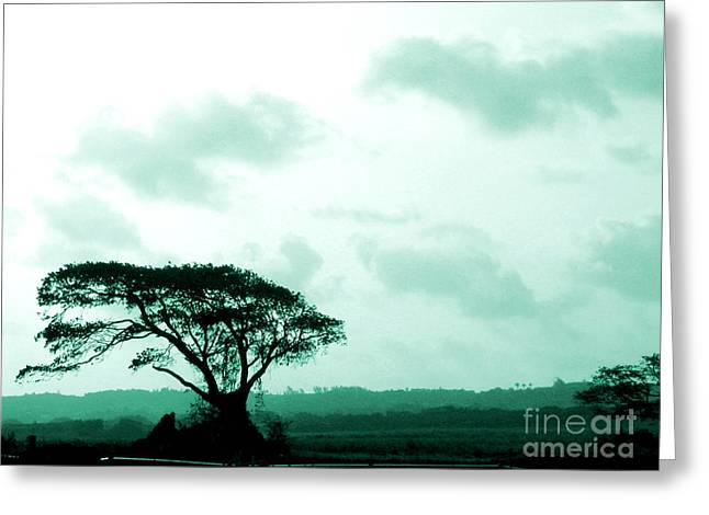 Landscape With Tree Greeting Card by Barbara Marcus