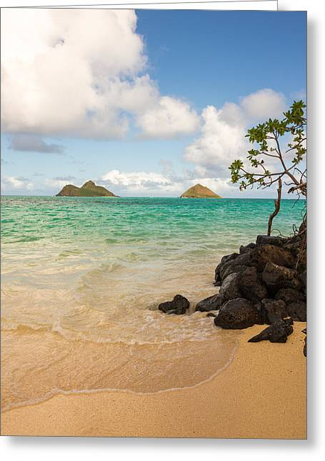 Ocean Shore Greeting Cards - Lanikai Beach 1 - Oahu Hawaii Greeting Card by Brian Harig
