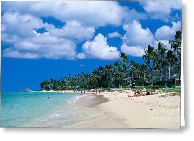 Vince Greeting Cards - Lanikai Beach Greeting Card by Vince Cavataio - Printscapes