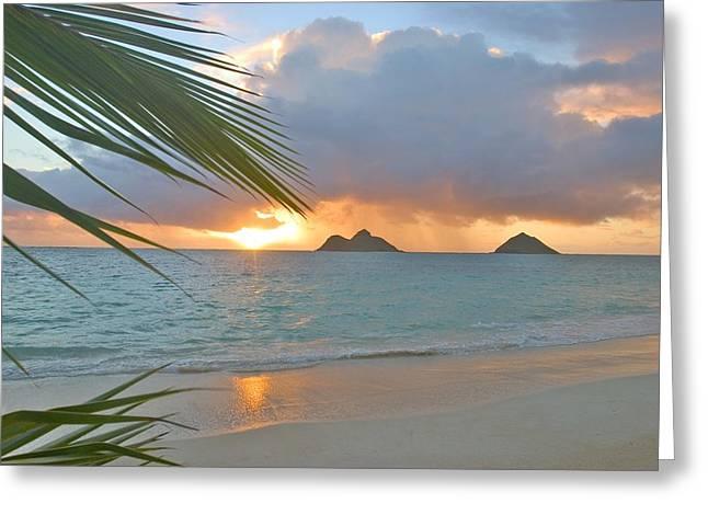 Hawaii Beach Art Greeting Cards - Lanikai Sunrise Greeting Card by Tomas del Amo - Printscapes
