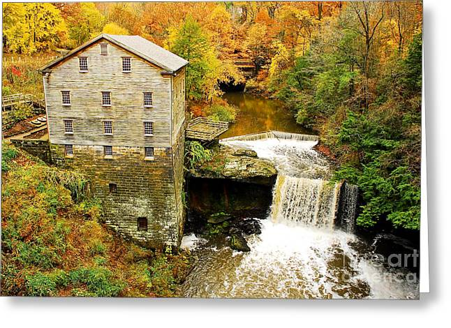 Tony Greeting Cards - Lantermans Mill in Fall Greeting Card by Tony  Bazidlo