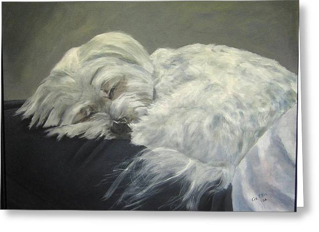 Sleeping Maltese Greeting Cards - Lap Dog Greeting Card by Elizabeth  Ellis