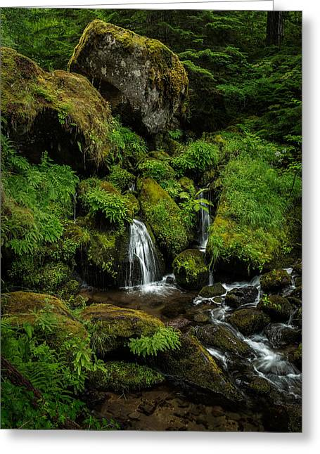 Stream Pyrography Greeting Cards - Large Boulders in the Stream Greeting Card by Rick Strobaugh