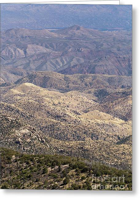 Large Desert View Greeting Card by Mike Cavaroc