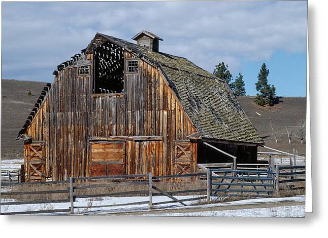 Large Old Barn With Beautiful Colorful Woodgrain Greeting Card by Jerry Voss