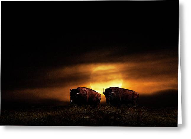 Large Orange Moon Rise With Buffalo Greeting Card by Randall Nyhof