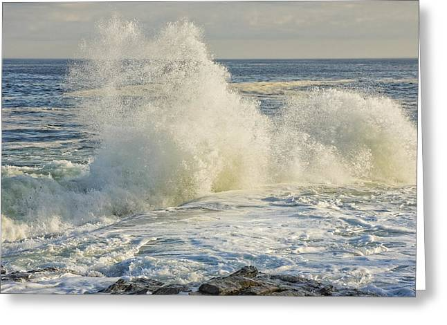 Maine Shore Digital Greeting Cards - Large Waves On Rocky The Coast Of Maine Greeting Card by Keith Webber Jr