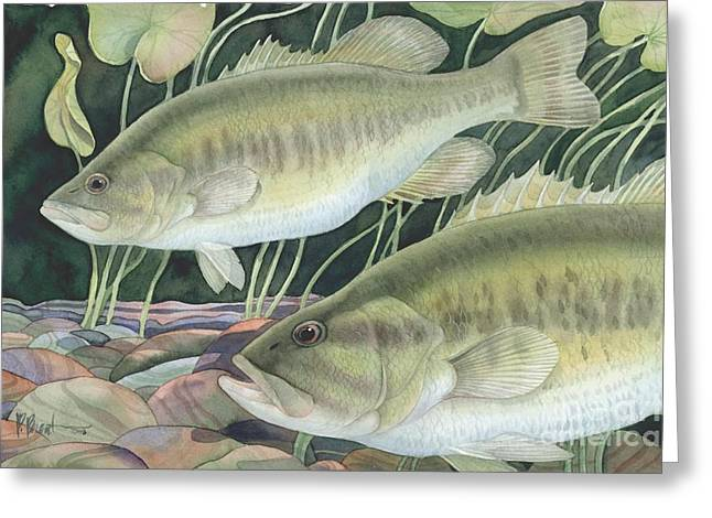 Fish Pond Greeting Cards - Largemouth Bass Greeting Card by Paul Brent