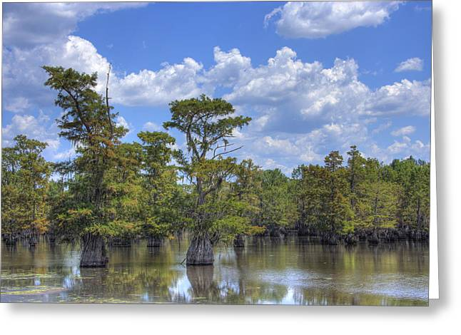 Lilly Pads Greeting Cards - Largemouth Country Greeting Card by Barry Jones