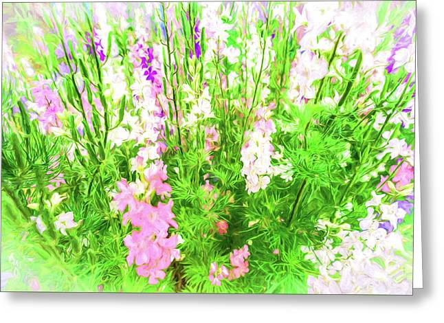 Larkspur Flowers In Soft Oil Style Greeting Card by John Williams