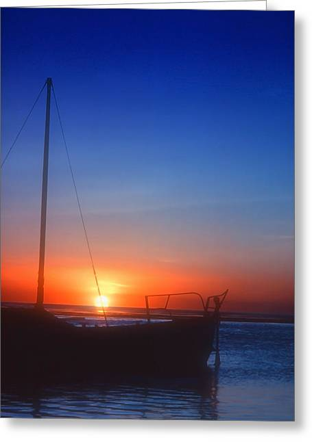 Sailboats In Water Greeting Cards - Last Light Greeting Card by Stephen Anderson